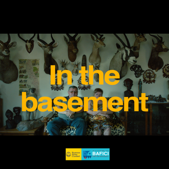 6 basement